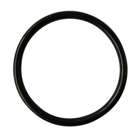 Cornelius Keg Deckel O-Ring